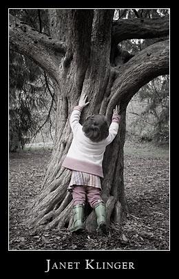 Ellie climbs base of old tree, washington park arboretum